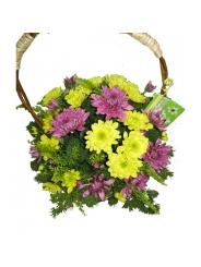 Букет с хризантемой №Х0006